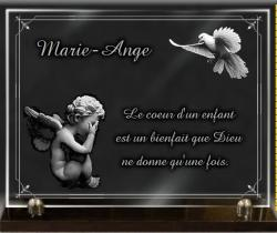 Verre grav� avec bord d�coratif, ange et colombe.
