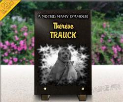 Plaque funéraire chien et chat avec gravure + dorure 24 carats