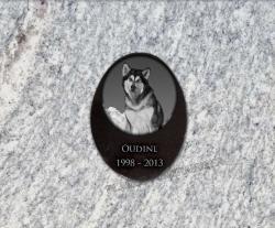 Plaque granit ovale, Médaillon en granit gravé à coller. Dessin de chien.