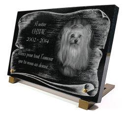Plaque pour tombe de chien yorkshir avec décor parchemin