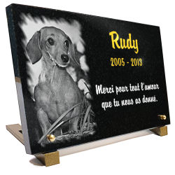Plaque mortuaire personnalisée pour chien Teckel avec texte et dorure 24 carats.