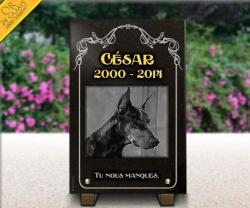 Plaque mortuaire chien Dobermann avec dorure et arabesques