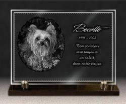 Plaque funeraire en verre sur socle avec dessin chien Yorkshire Terrier