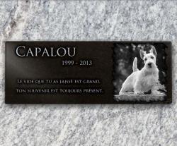 Plaque granit adhésive avec photo de chien 40x15cm
