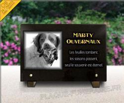 Plaque personnalisable chasseur avec chien de chasse, faisan et dorure 24 carats