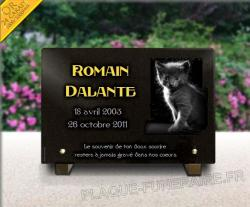 Plaque funéraire à personnaliser avec chaton et dorure