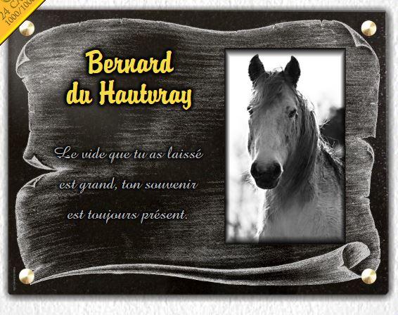 plaque fun raire cheval et parchemin grav s sur granit 30x40 cm. Black Bedroom Furniture Sets. Home Design Ideas
