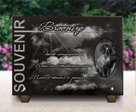 Plaque funéraire granit souvenir rayons de soleil nuages ciel Braque D'auvergne Braque Allemand. 25 x 35 cm.