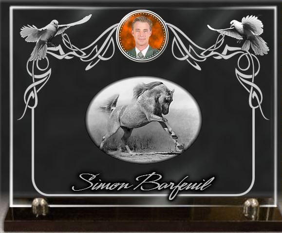 Plaque funéraire verre colombes arabesque verre socle . 30 x 40 cm.