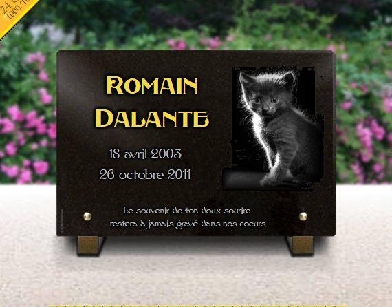 Plaque funéraire granit chatons . 20 x 30 cm.