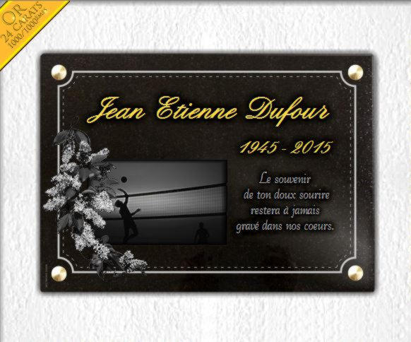 Plaque funéraire granit lilas beach volley bordure decorative dorure 24 carats. 25 x 35 cm.