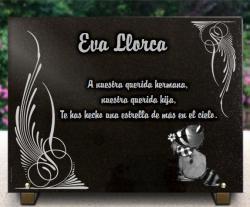 Personalizar esta placa en línea angel