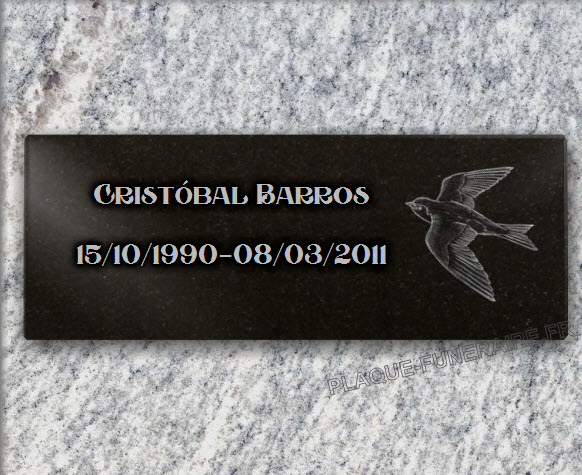 PLACA FUNERARIA granito  . 15 x 40 cm.