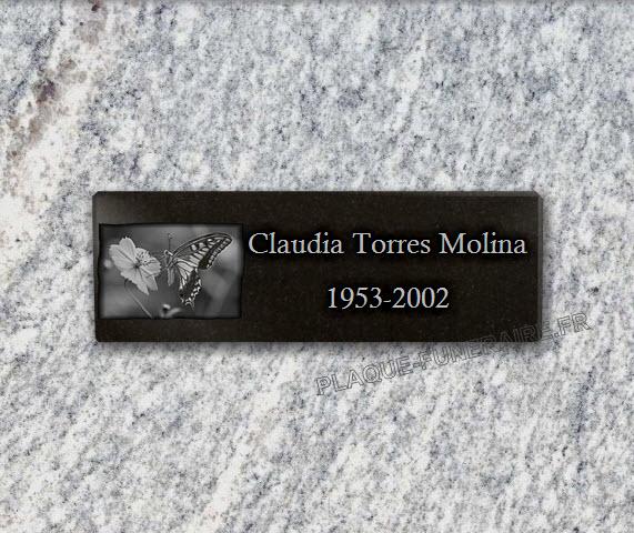 PLACA FUNERARIA granito adhesiva . 10 x 30 cm.