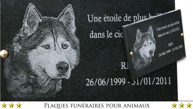 memorial plaque for dog grave