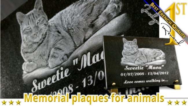 Cat and pet memorial plaque to customize