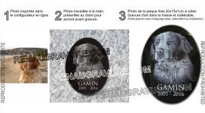 Photo de : Plaque funeraire chien, photo gravure et Médaille en granit à coller.