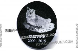 Photo de : plaque mortuaire personnalisée pour chien.