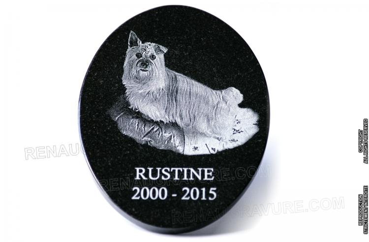 plaque fun raire personnalis e pour chien. Black Bedroom Furniture Sets. Home Design Ideas