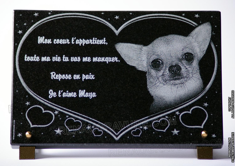 Plaque funéraire personnalisée pour chien Chihuahua.