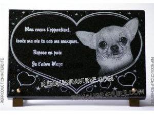 Photo de : Plaque funéraire personnalisée Chiwawa chien