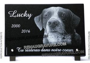 Photo de : Plaque funéraire chien épagneul breton. En granit.