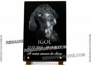 Photo de : Une plaque funéraire pour un bon chien nommé Igol