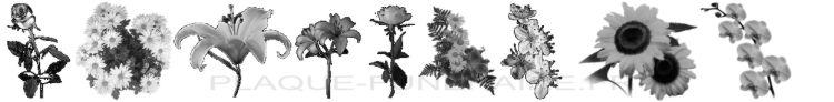 Dibujos de flores en las placas del cementerio