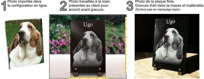 Plaque funéraire chien photo gravée