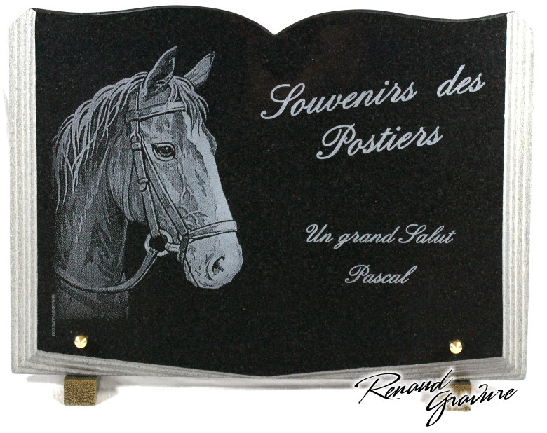 Memorial plaque opened book shape in granite with drawing horse